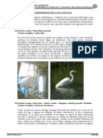 01 Biodiversidad Del Lago Titicaca