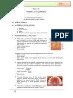 Práctica Nº 1.Docxodontopediatria