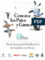 Guia ID Anatidos Mexico 3raEdicion