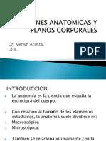 Posiciones Anatomicas y Planos Corporales