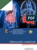 Clinica Quirurgica I. Obstruccion Intestinal Final