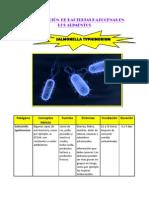 Identificación de Bacterias Patogenas en Los Alimentos