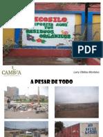 Manejo de Ecosilo IE JLO