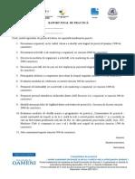 Raport Final de Practica_ase
