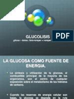Glucolisis Final