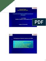 10_Jose Luis Garcia Fierro_Produccion de H2 Mediante Renovab