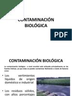 Iing Contaminación Clase 5