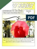 newsletter 33