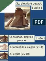 1 João 1