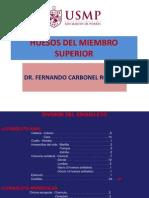 131431678 Miembro Superior Huesos y Articulaciones (1)