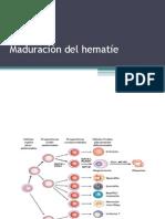 Clase 07 Estructura y Función Del Hematíe