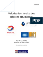 Valorisation in-situ Des Schistes Bitumineux