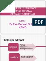 peny-adrenal-kuliah.pptx