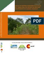 Beneficios económicos de los sistemas agroforestales en las comunidades Pindoi y Zanja Cora (Tesis de Grado)