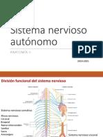 05 1P sistemanerviosoautonomo