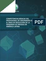 Competencias Enfermeria 2012