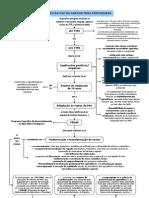 Impacto da PAC na agricultura portuguesa (11.º)
