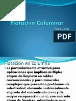 Flotacion Columnar