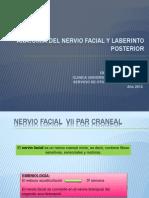 Anatomia Nf y Vestibular