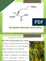 Clase3 Alcaloides Farmacog2 2014 I