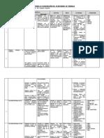 Matriz Para La Elaboración Del Plan Anual de Trabajo