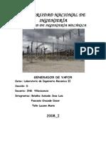 Generador de Vapor - 2008I