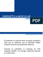 Energética Muscular