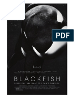 Blackfish Script