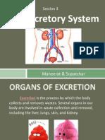 health- presentation-excretory system