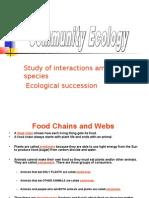 FoodChain Web