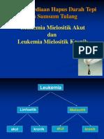 ppt AML dan LGK