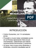 3. Genetica Mendeliana y Otros