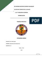 citogenetica clinica.docx