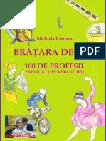 BrataraDeAur_OSutaDeProfesiiExplicatePtCopii