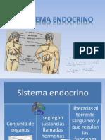 presentacin 3 biologa - sistema endocrino