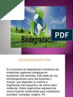 BIODEGRADACI+ôN -II