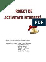 Proiect Integrat 11-12-2012