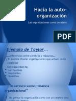 Las Organizaciones Como Cerebros