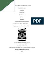 Laporan Praktikum Biokimia Perc. 6 Urease