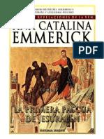 Visiones y Revelaciones de Ana Catalina Emmerich - Tomo 4