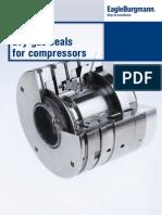 Dgs-ep-e e4 Dgs-dry Gas Seals 02.14 (1)
