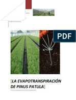 Proyecto Evapotranspiración IIAS