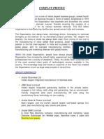Introduction - Jindal Group