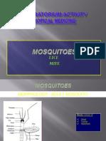 Mosquitolicemite Tropimed Lab Activity 2013 Display