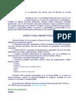 3a Structura proiectelor
