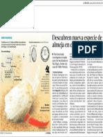 Descubren nueva especie de almeja en costa  chilena -La Tercera 28 de Abril 2014.pdf