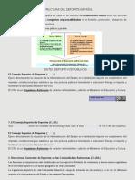 Estructura Deportiva Tema1