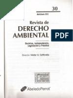 PINTO_RDA30_Acción de Amparo Ambiental