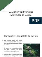 Carbono y La Diversidad Molecular