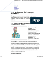 Los Sistemas Del Cuerpo Humano _ Estructura y Función de Los Seres Vivos _ Icarito